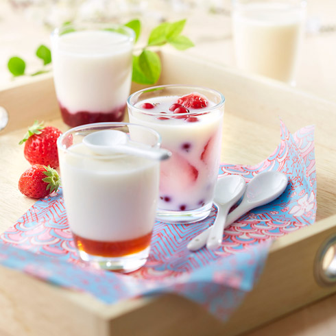 Home Made Yogurt