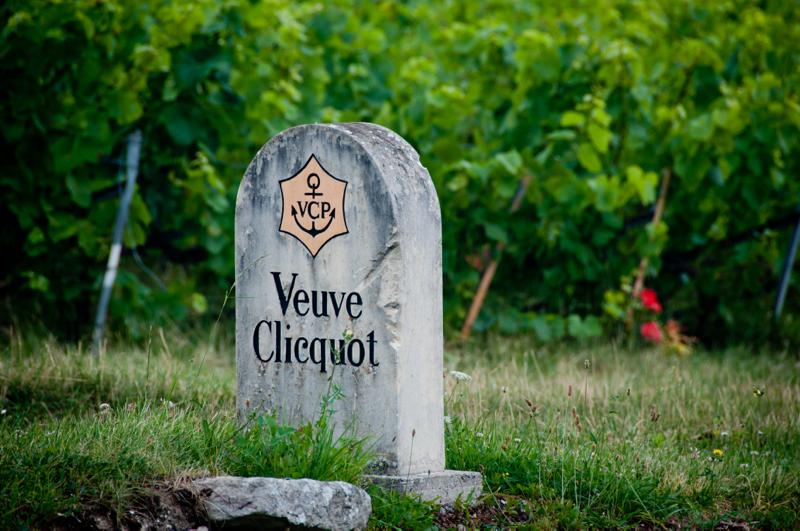 Veuve Cliquot vineyard